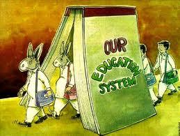 Donkeys of education