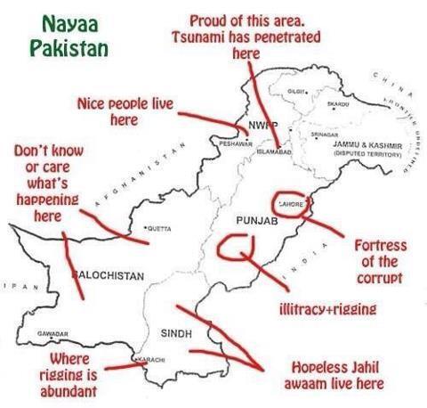 naya Pakistan according to PTI voter