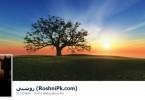 Facebook/PTA block Roshni