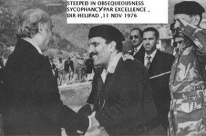 zia and bhutto