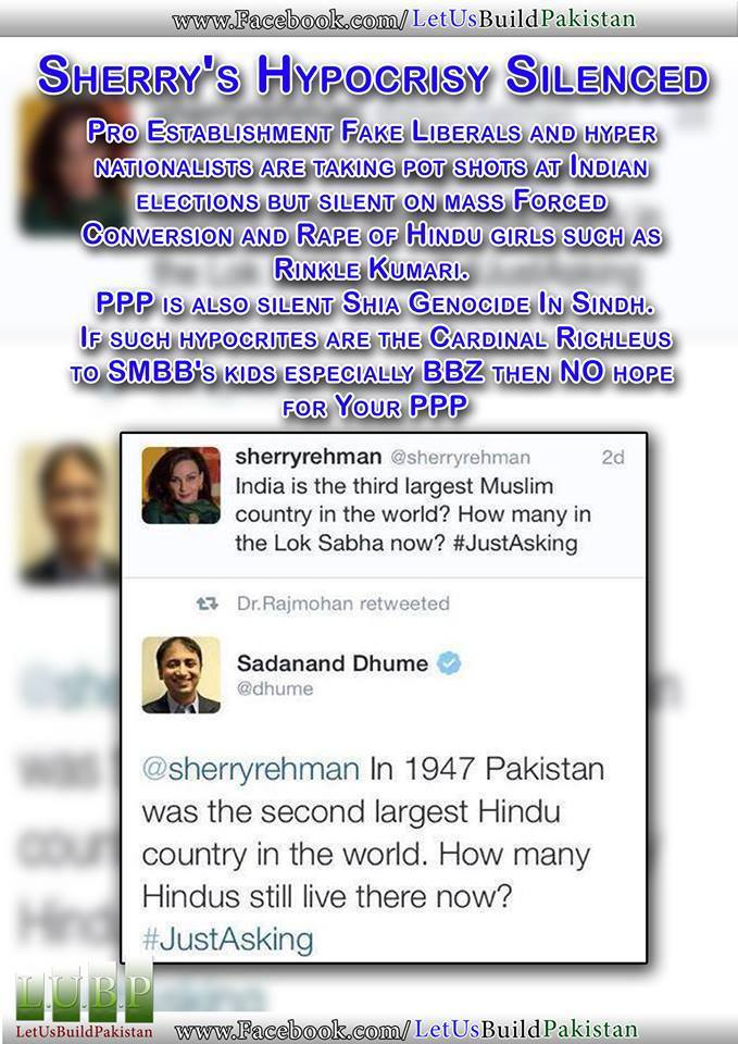 Persecution Of Hindus In Pakistan A Facebook Discussion - How many hindus in the world