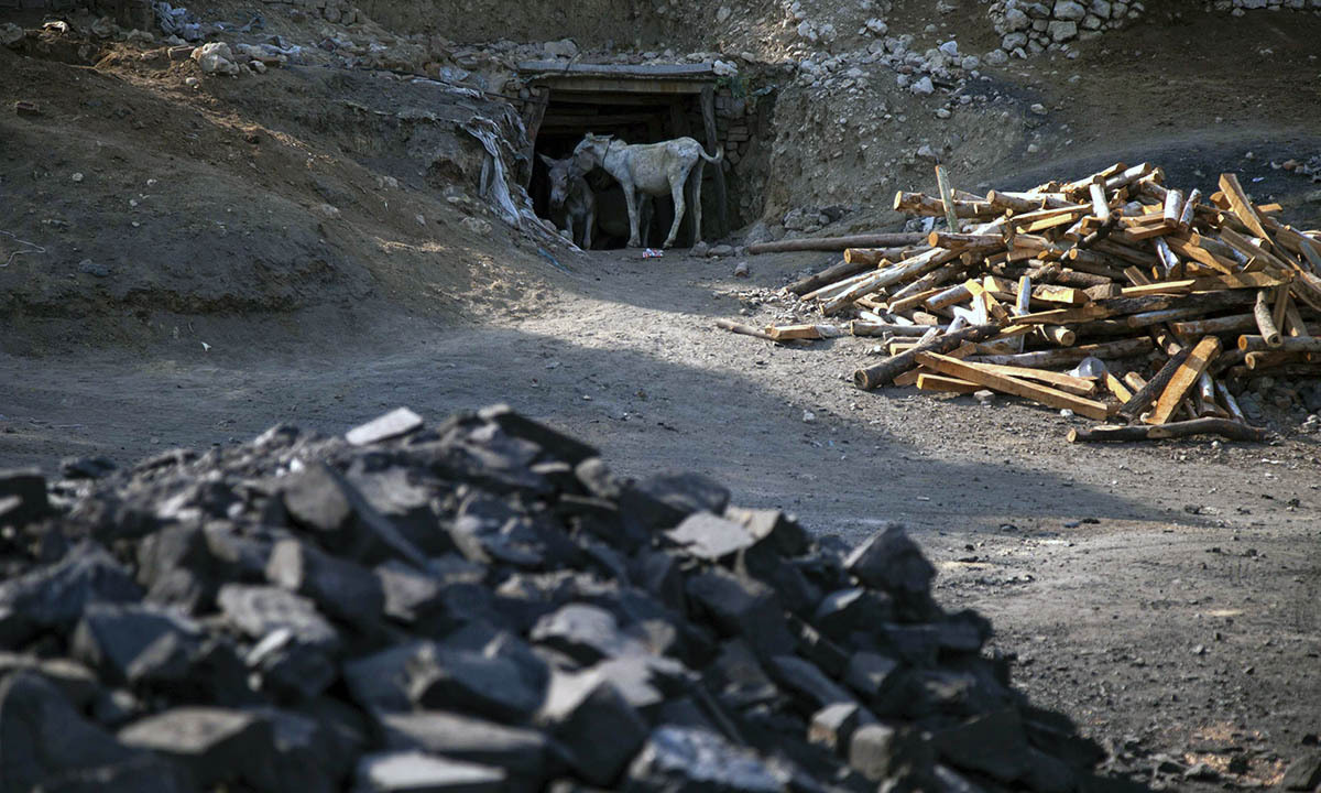 Donkeys stand at the entrance of a coal mine in Choa Saidan Shah, Punjab province