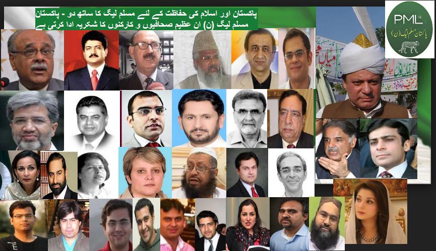 pmln media team