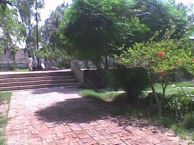 یوسف پارک