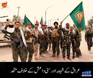 iraq shis and sunni