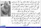 سہیون درگاہ پہ بم دھماکہ : پاکستان کا جعلی لبرل مافیا جھوٹ پہ مبنی غم و غصّہ ابھارنے کا ماہر ہے تحریر : ریاض ملک ترجمہ : عامر حسینی