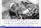 یمن کی کسی کو پرواہ نہیں ہے – عامر حسینی